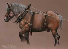 Ardennais au travail Pastel Art, Horses, Drawings, Animals, Animales, Animaux, Sketches, Animal, Drawing