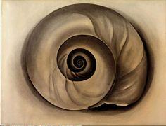 okeefe shell