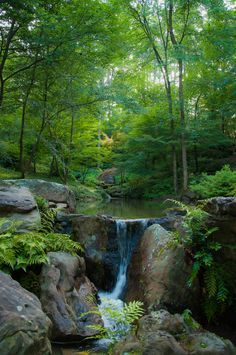 Garvan Woodland Gardens in Hot Springs, Arkansas, USA