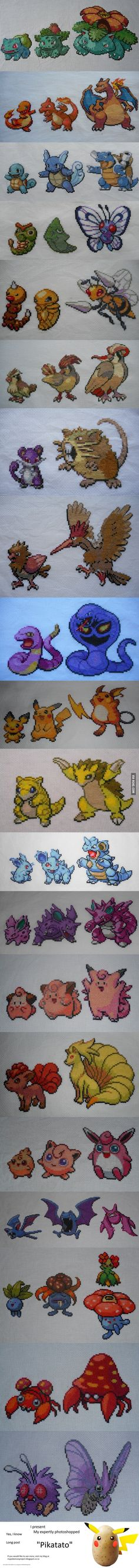 My hobby is cross-stitching Pokemon. Here's what I've done so far