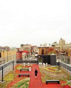 The roof's landscaped courtyard at The Brook, Common Ground's first construction project in the Bronx, features a red square tiled pathway, long concrete benches, and quite the view. Photo by: Jake Stangel