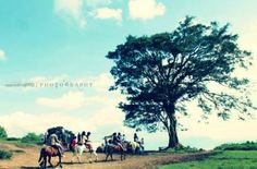 Wandering - Photography by Sarah Mae Divinagracia in Tagaytay Photowalk at touchtalent