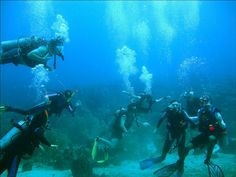 channel islands de californie | Isla Fuerte - Buceo Caribe Colombiano | Flickr - Photo Sharing!