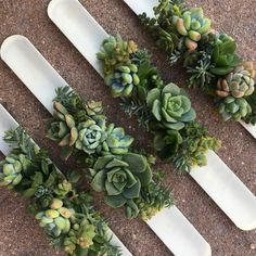 Succulent Corsages - A new twist on the succulent trend. All corsages are custom designed in store. Prom Corsage And Boutonniere, Bridesmaid Corsage, Corsage Wedding, Flower Bouquet Wedding, Corsages, Boutonnieres, Succulent Corsage, Succulent Boutonniere, Flower Corsage
