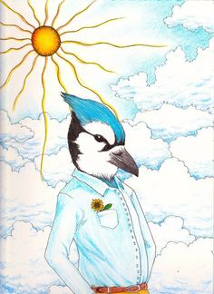 Sophisticated Bluejay