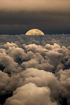 A Gentleman's Interest: above the clouds.