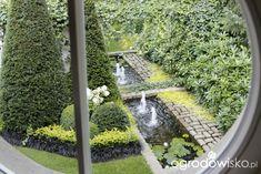 Ogród nie tylko bukszpanowy - część III - Forum ogrodnicze - Ogrodowisko