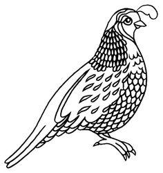 Quail Silhouette: For some reason, the quail has always