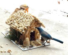 """Ginger-bird House"" - decorate a gingerbread house for the birds with popcorn, pretzels, peanuts, sunflower seeds, & a colorful variety of bird seed. 