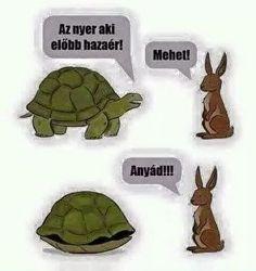 Cute Jokes, Funny Cute, Funny Jokes, Bad Memes, Dankest Memes, Hahaha Hahaha, Cartoon Crazy, Funny Photos, Funny Images
