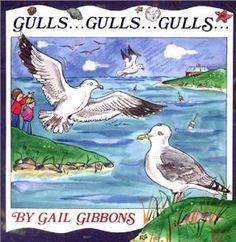 Gulls... Gulls... Gulls...