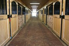 Boarding and Training horses, teaching riding lessons