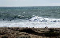 Ventura surfers, December, 2013.