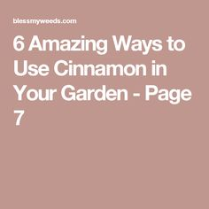 6 Amazing Ways to Use Cinnamon in Your Garden - Page 7