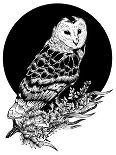 Owl Illustration by Paolo Geronimo