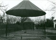Image result for abandoned zoos