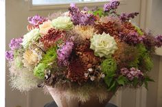 mum,rose,lilac and Cotinus coggygria