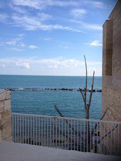 Molfetta (Bari)