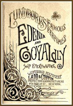 Vintage Victorian Advert for Lundborg's Edenia & Goya Lily Perfumes 1889 beauty ad Vintage Typography, Typography Letters, Typography Design, Vintage Branding, Vintage Labels, Vintage Ads, Vintage Posters, Vintage Photos, Vintage Graphic Design