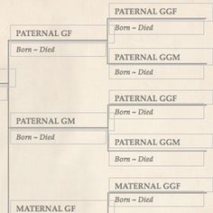 20 best free family tree templates images family trees family