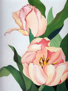 Art by Dawn McDonnell Art And Illustration, Watercolor Illustration, Watercolor Artwork, Watercolor Flowers, Flowers Wallpaper, Poster Photo, Bunny Art, Silk Painting, Botanical Art
