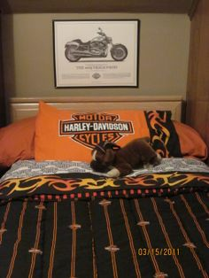 This Boy S Room Has A Platform Bed With Harley Davidson