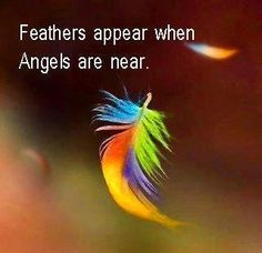 KNEW IT! especially in places where there are no birds! atleast not with feathers like that!