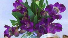 Πανέμορφα γατάκια σας λένε όμορφες καλημέρες! - eikones top Plants, Plant, Planets