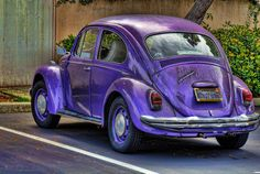 Purple Beetle Car  Why is it that just looking at a VW beetle or a Basset Hound will make you smile.???!!!