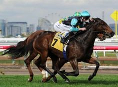 Hot Mama's win at Flemington was her best yet and produced another great result for Hearts Racing fans. She started...