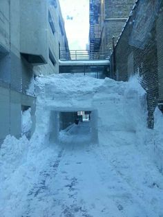 Only in Minnesota!