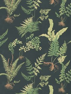 Thibault fern wallpaper