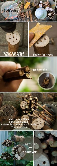 Comment faire un hotel a insectes etape par etape et en photo How to make a hotel to insects step by step and in photo