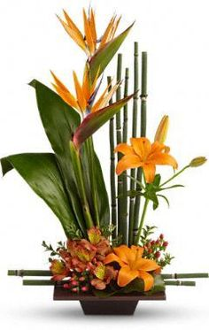 Beautiful Arrangement for the Tropical lovers..