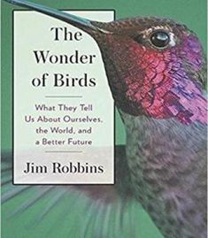 The Wonder Of Birds: What They Tell Us About Ourselves The World And A Better Future PDF