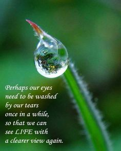 Motivational Wallpaper on Life: Perhaps our eyes need to be washed by our tears Once in awhile, so that we can see life with a clearer view again Today Quotes, Morning Quotes, Life Quotes, Life Sayings, Uplifting Quotes, Inspirational Quotes, Motivational Quotes, Great Quotes, Funny Quotes