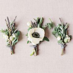 sprout-wedding-vineyard2.jpg