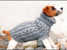 "The Lookout - Knitted DROPS dog coat in ""Karisma"" with cable pattern. - Free pattern by DROPS Design Knitting Patterns Free Dog, Jumper Patterns, Loom Patterns, Free Knitting, Crochet Patterns, Free Pattern, Knitted Dog Sweater Pattern, Dog Coat Pattern, Knit Dog Sweater"