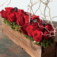 "A lush and abundant display of deep red roses is an expression of modern romance. Paired with dark chocolate brown fern curl, smokebush, and natural Manzanita, one or two dozen classic red roses come arranged in a long hand crafted wood trough. Rosso Amore 2 Dozen (pictured) measures 19"" x 4"" x 12"" to top of branches"