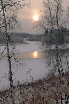 pagewoman:  Winter Sun
