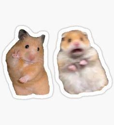 Stickers Cool, Stickers Kawaii, Preppy Stickers, Bubble Stickers, Meme Stickers, Laptop Stickers, Snapchat Stickers, Meme Chat, Homemade Stickers