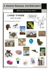 30 Best Stem Living Or Nonliving Images Nonliving Kindergarten Science Living And Nonliving