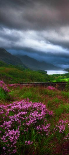 Glenfinnan Viaduct is a rail bridge!  Travel to Scotland!  See 28 Mind Blowing photos of this beautiful country!  Scottish Highlands | Edinburgh | Glasgow | Castles | Isle of Skye