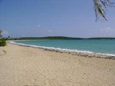Activities in Vieques: Explore the Beach(es)