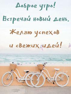 Картинки С добрым летним утром. Более 80 открыток с надписями. Good Morning, My Love, Words, Buen Dia, Bonjour, Bom Dia, Horse