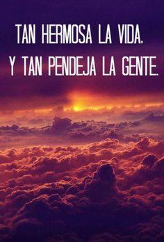 That 's true