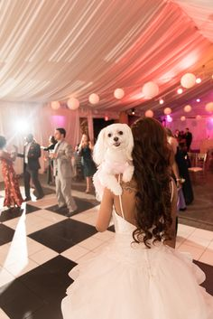What could be better than having your beloved puppy at your wedding? Park Tavern is located in Atlanta, Georgia, and this wedding was a blast! The pup and bride killed it on the dancefloor! Park Tavern, Piedmont Park, Atlanta Georgia, Special Events, Pup, Flower Girl Dresses, Dance, Bride, Wedding Dresses