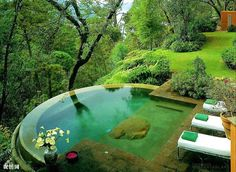 Love this pool and how it compliments the landscape. ecosystM – Ahhh…. Rest
