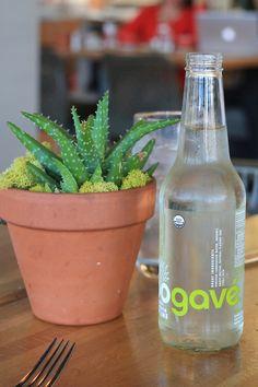 Key Lime Soda - Carrie Bradshaw Lied
