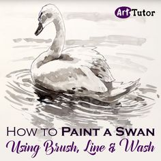 Learn how to paint a graceful swan using only a brush and a line and wash technique in this watercolour painting tutorial by artist Michele Illing.
